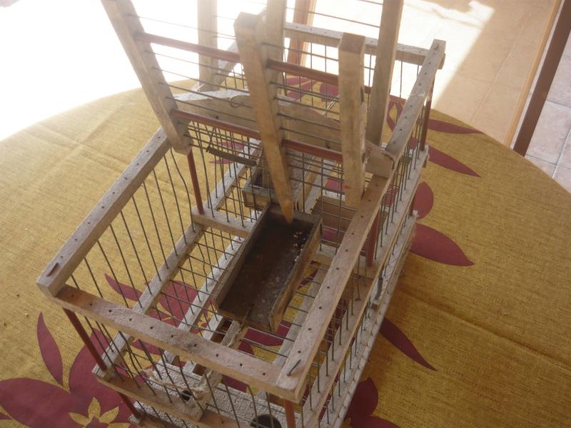 Capture d'oiseaux - Cage � bascule