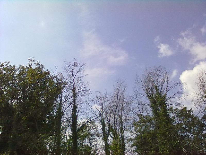 cage-appelant-cimeau-grandet-2011-9.jpg
