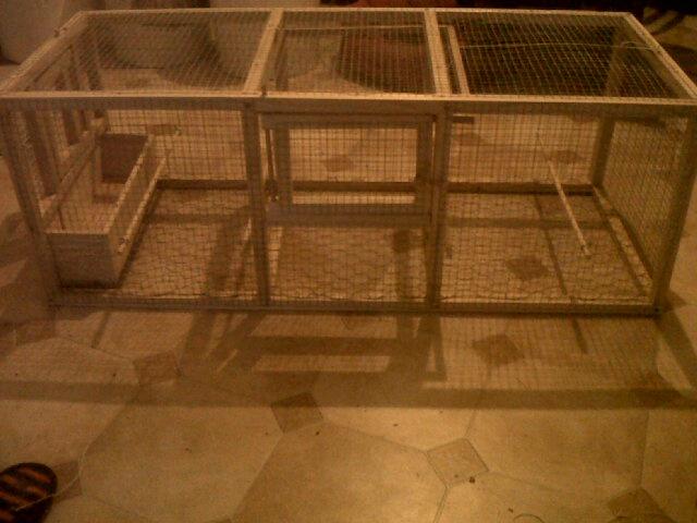 cages pour grive fabrication maison conseils. Black Bedroom Furniture Sets. Home Design Ideas