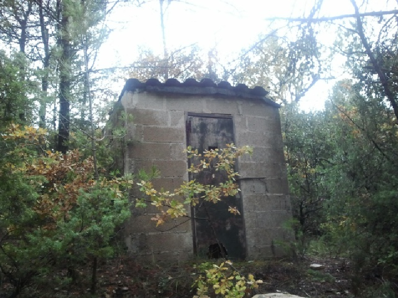 chasse-grives-poste-plomb-du-9-2012-1.jpg