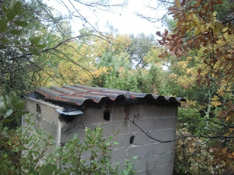 chasse-grives-poste-plomb-du-9-2012-3.jpg