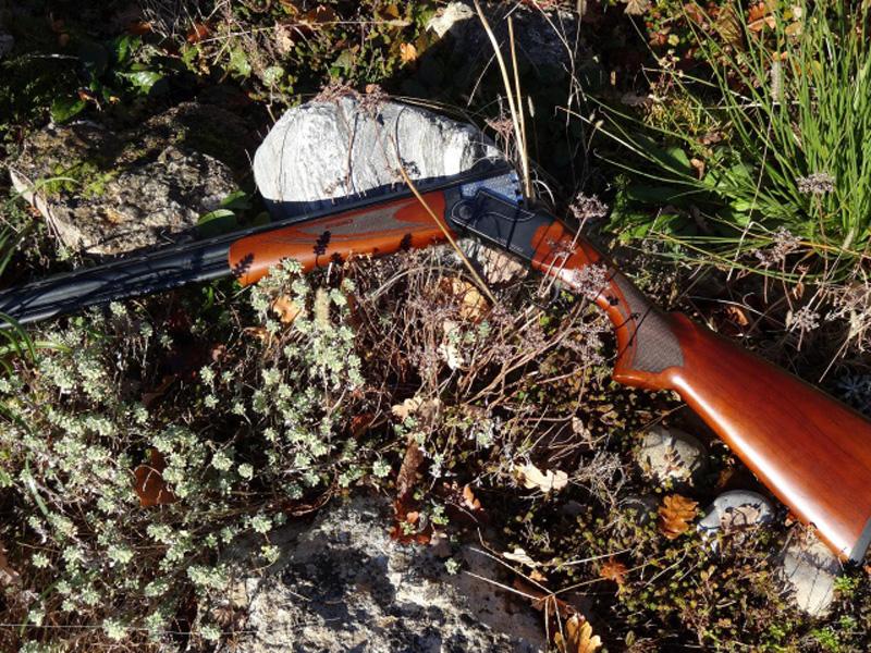fusil mixte cal20/410