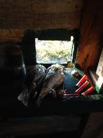 Concours photo nature morte - frejusien