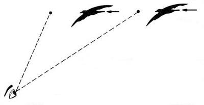 Le tir de la grive au vol - Cas N°4