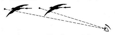 Le tir de la grive au vol - Cas N°6