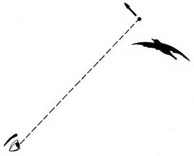 Le tir de la grive au vol - Cas N°7