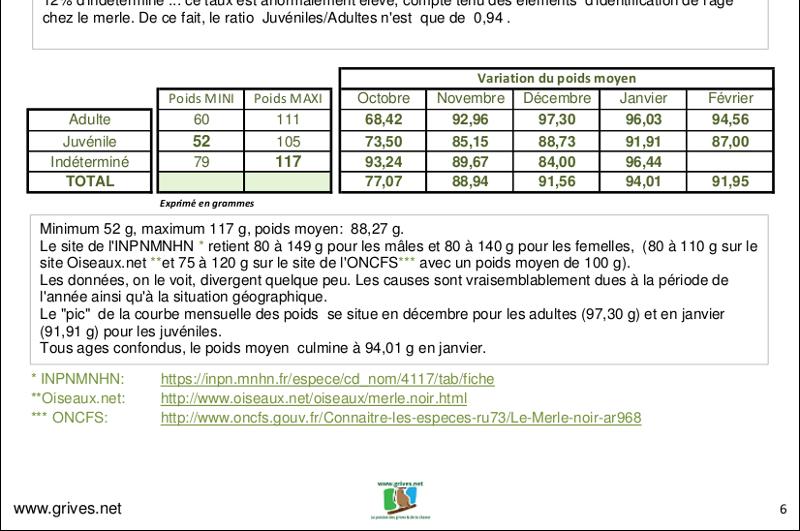 Statistiques poids et age - merle noir