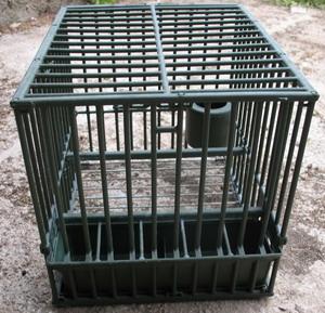 cages grives cage grive appelant en plastique cage grive. Black Bedroom Furniture Sets. Home Design Ideas