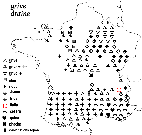 carte noms grives draine