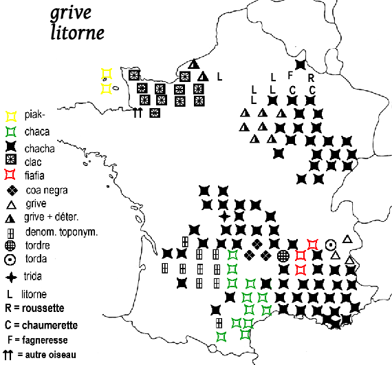 carte noms grives litorne