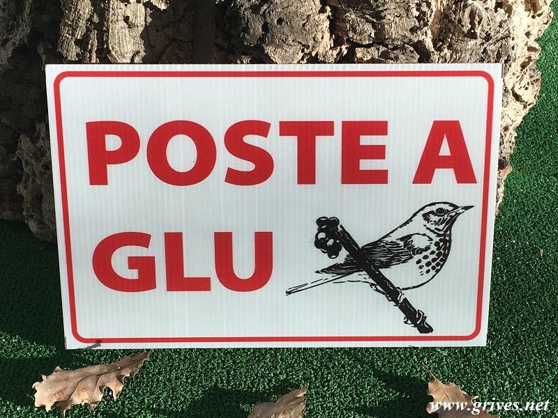 """Panneau chasse """"Poste à glu"""" - Signalisation chasse en cours"""
